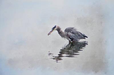Heron Fishing  - Textured Poster