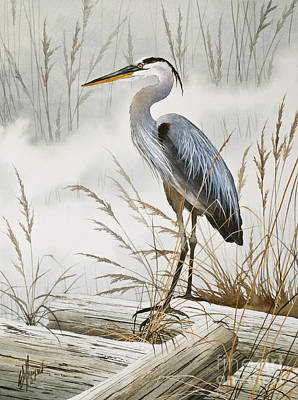 Herons Misty Shore Poster