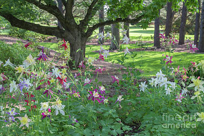 Poster featuring the photograph Hershey Gardens 1 by Chris Scroggins