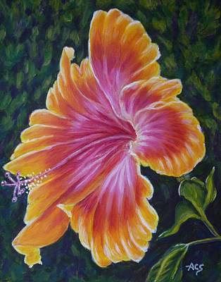 Poster featuring the painting Hibiscus by Amelie Simmons