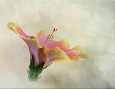 Hibiscus Art Poster