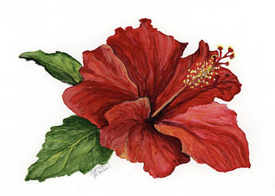 Poster featuring the painting Hibiscus Flower by Darice Machel McGuire