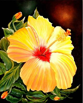 Hibiscus Glory Poster