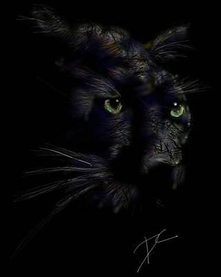 Poster featuring the digital art Hidden Cat by Darren Cannell