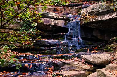 Hidden Falls 5 Poster by Chris Flees