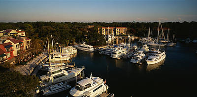 High Angle View Of Yachts Moored Poster