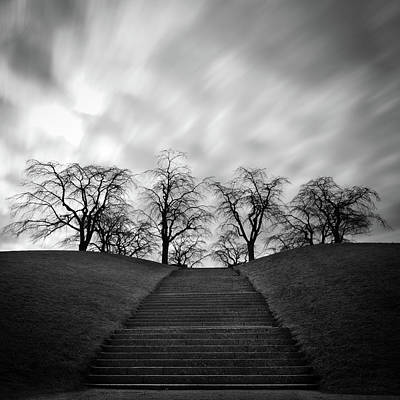 Hill, Stairs And Trees Poster