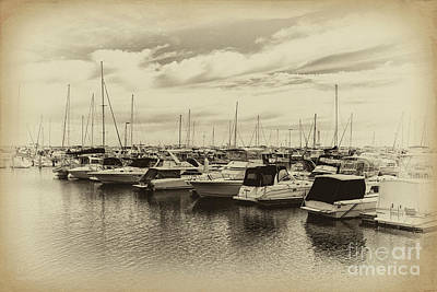 Hillarys Boat Harbour, Western Australia Poster by Elaine Teague