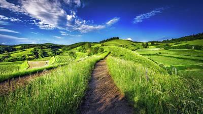 Hills Of Summer Poster
