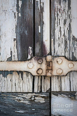Hinge On Old Shutters Poster by Elena Elisseeva