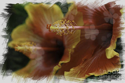 Poster featuring the photograph Hippi Hibiscus by Lori Mellen-Pagliaro