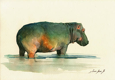 Hippo Watercolor Painting Poster