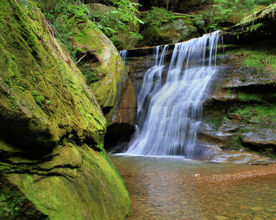 Hocking Hills Hidden Falls In Spring Poster by Dan Sproul