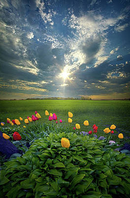 Hold Fast What Is Good Poster by Phil Koch