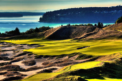 Hole #14 At Chambers Bay Poster by David Patterson