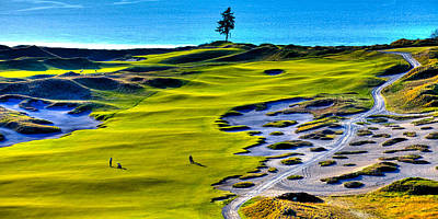 Hole #5 At Chambers Bay Golf Course Poster by David Patterson