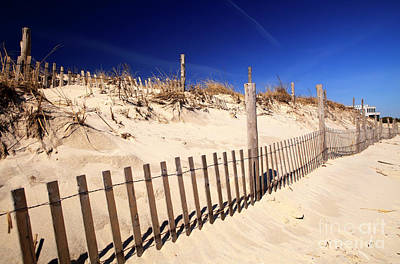 Poster featuring the photograph Holgate Dune Fence by John Rizzuto