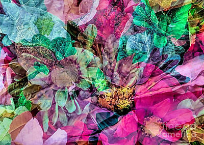 Holiday Floral Composite Poster by Janice Drew