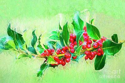 Poster featuring the photograph Holly Berries Photo Art by Sharon Talson
