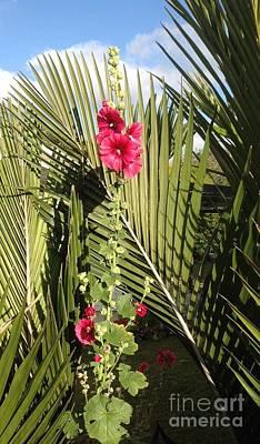 Holly Hock On Palm Leaves Poster by Karen Moren