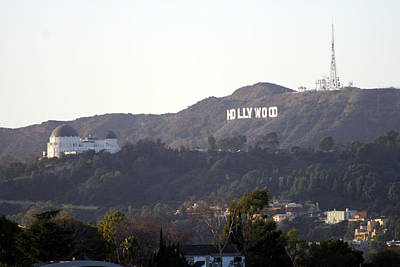 Hollywood Hills And Griffith Observatory Poster