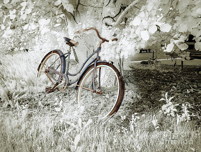 Poster featuring the photograph Hollywood Schwinn II by Craig J Satterlee