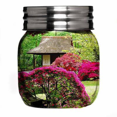 Home Flower Garden In A Glass Jar Art Poster by Marvin Blaine