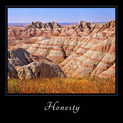 Poster featuring the photograph Honesty 1 by Mary Jo Allen