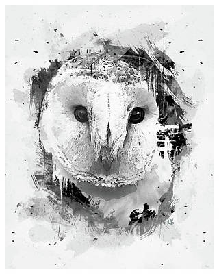 Hoot 2 Poster