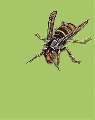 Hornet Poster by Jude Labuszewski