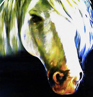 Horse 1c By Nixo Poster by Nicholas Nixo