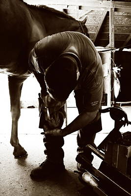 Horse And Farrier Poster by Angela Rath