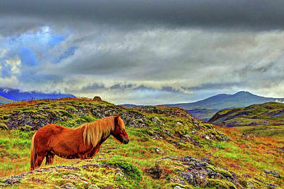 Poster featuring the photograph Horse And Mountains by Scott Mahon