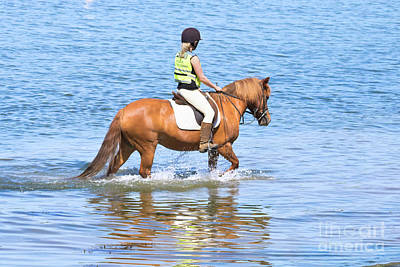 Horse And Rider In The Sea Poster by Terri Waters