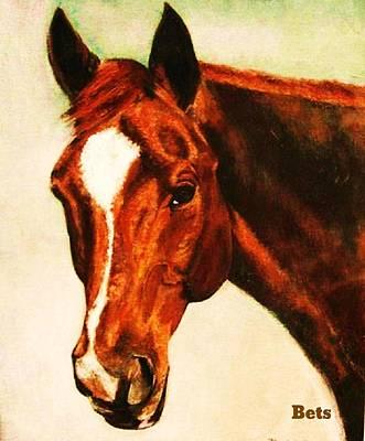 Horse Art Horse Portrait Maduro Deep Chestnut Poster