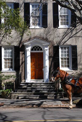 Horse Carriage In Charleston Poster