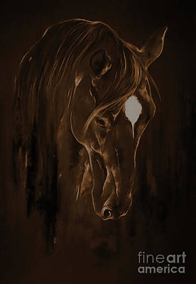 Horse Face 3801 Poster by Gull G