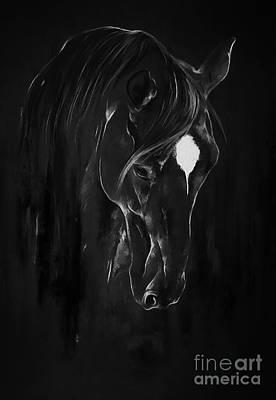 Horse Face Art 4601 Poster by Gull G