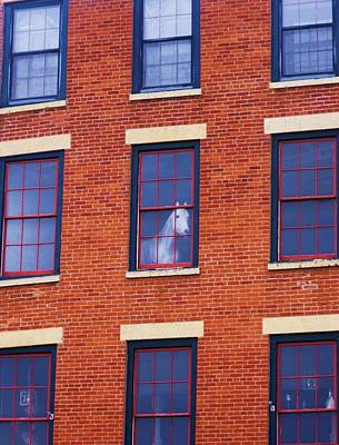 Horse In An Upstairs Window Poster