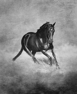 Horse Power Black And White Poster by Michelle Wrighton