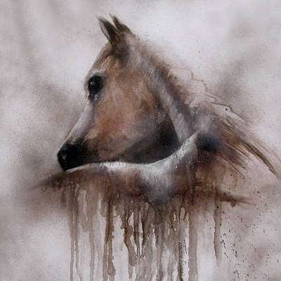 Horse Shy Poster by Jackie Flaten