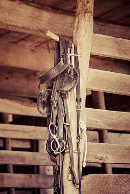 Horse Tack Poster