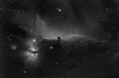 Horsehead And Flame Nebulae In Orion Constellation Poster by Pawel Radomski
