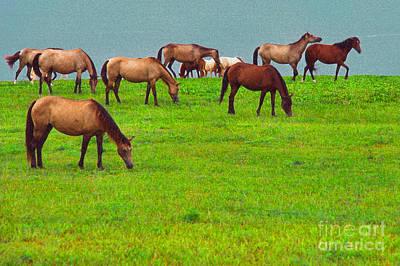 Horses Graze By Seaside Poster