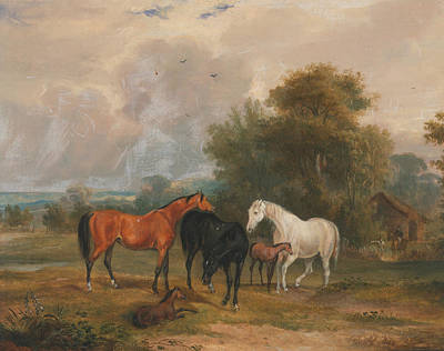 Horses Grazing - Mares And Foals In A Field Poster