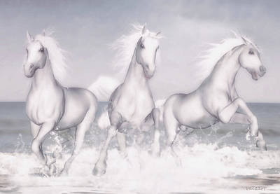 Horses Of The Camargue Poster by Valerie Anne Kelly