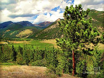 Horseshoe Park, Rocky Mountain, Colorado Poster by Joan Minchak