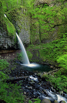 Horsetail Falls Waterfall Art By Kaylyn Franks Poster