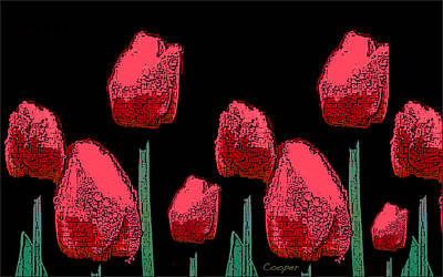 Hot Red Tulips Poster