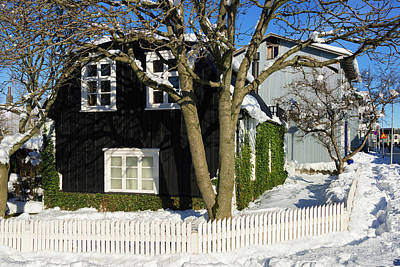 House In Reykjavik Iceland In Winter Poster by Matthias Hauser